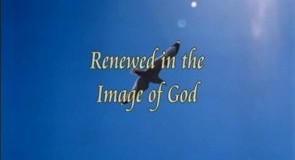 God's will and the image of God